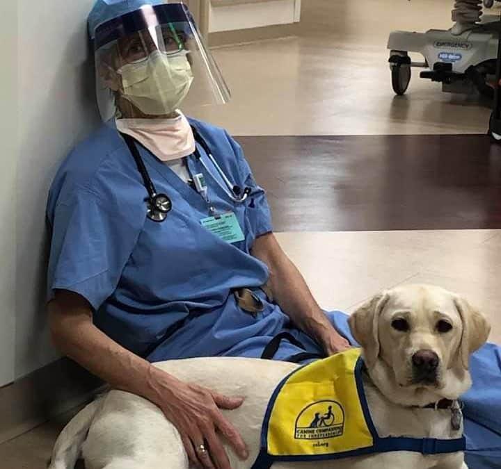 Este amigo brinda tranquilidad al personal médico encargado de enfrentar el Coronavirus.