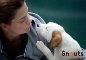 comunicarte mejor con tu mascota