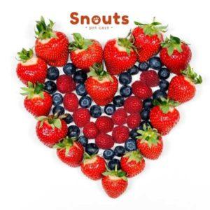 antioxidantes snouts