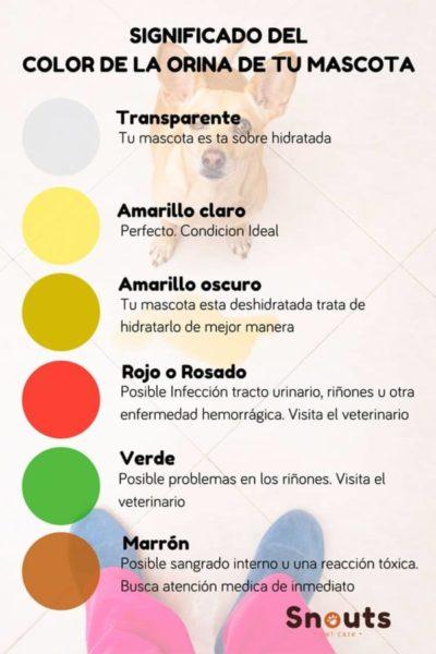 color de la orina