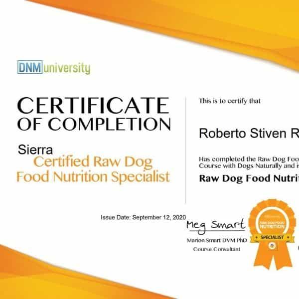 certificacion para perros