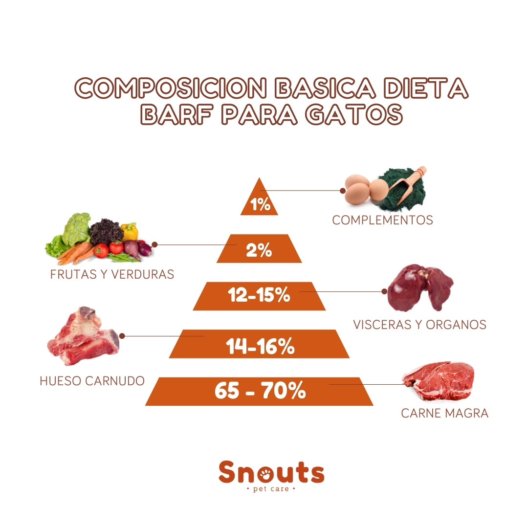 Dieta barf gatos